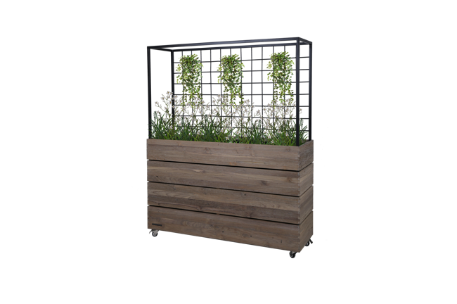Picture of AIKO PLANTER DIVIDER
